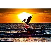 ペリカンのシルエット動物 - #9521 - キャンバス印刷アートポスター 写真 部屋インテリア絵画 ポスター 90cmx60cm