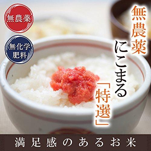 【無農薬米】特別栽培米 無農薬 無化学肥料 にこまる 特選 5�s 真空パック (5分づき)