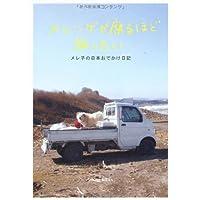 メレンゲが腐るほど旅したい メレ子の日本おでかけ日記 (P‐Vine Books)