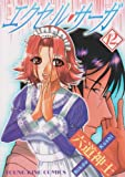 エクセル・サーガ 12 (ヤングキングコミックス)