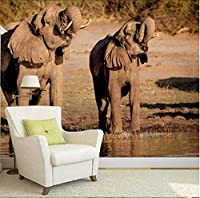Lcymt カスタム壁紙ライオンタイガー黒と白の動物壁画入り口寝室のリビングルームのソファーテレビの壁壁画壁紙家の装飾品F-350X250Cm