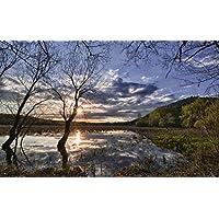 春の日の出、フィールド、水、木 キャンバスの 写真 ポスター 印刷 旅行 風景 景色 - (105cmx70cm)