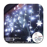 2x2 / 3x1 / 3x2 / 3x3m LEDのカーテンの滝は家の新年の装飾のためのクリスマスの装飾をつけます新年のクリスマスの装飾-snow white-110v