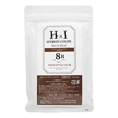 ピアッツァ H&I ハイブリッドカラー 8B  100g