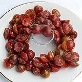 【PLANT】Heirloom Tomato Black Cherry エアルーム・トマト・ブラック・チェリー・(9cmポット・自根苗4苗)