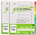 テージー カラーインデックスPP(2 4 30穴) 2冊タイプ IN-3410A