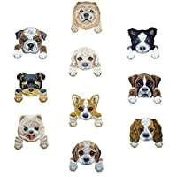 Goodsmax 犬ワッペン 刺繍 10 種類1セット 動物 ワンコ 幼稚園 アップリケ 可愛いタイプ プチプレゼント 保育園 大人子供兼用