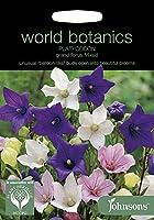 【輸入種子】 Johnsons Seeds World Botanics Collection Platycodon Grandiflora Mixed プラティコドン(桔梗)・グランディフローラ・ミックス ジョンソンズシード