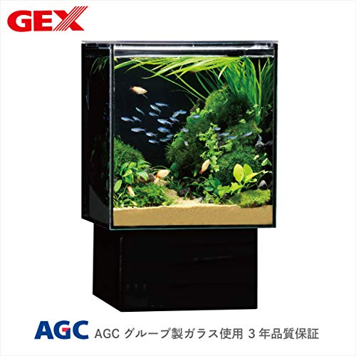 グラステリア アグス OF-230