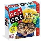 Bad Cat 2020 Calendar