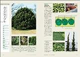 樹木別に配植プランがわかる植栽大図鑑 (エクスナレッジムック) 画像