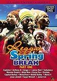 Reggae Spring Break 2008 Part 1 [DVD] [Import]