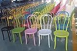 500 の中国を作った椅子 Thonet ウィーンの椅子の部分