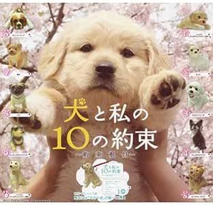 犬と私の10の約束 ~約束根付~ 全10種セット