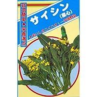 【 菜心 】 種子 小袋(約10ml)