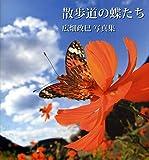 散歩道の蝶たち―広畑政巳写真集 画像