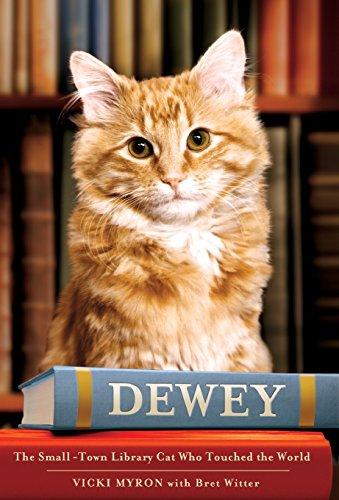 Deweyの詳細を見る
