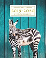 2019-2020: 16-Month Weekly and Monthly Planner/Calendar Sept 2019-Dec 2020 Zebra on Blue Wood Background
