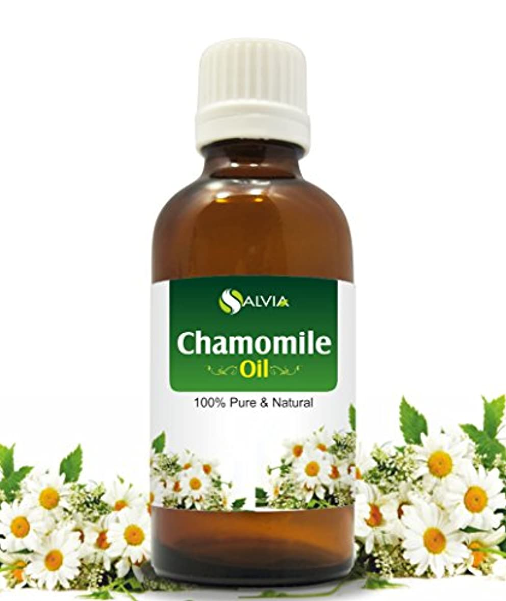 滅多すでにコミュニティCHAMOMILE OIL 100% NATURAL PURE UNDILUTED UNCUT ESSENTIAL OIL 100ML