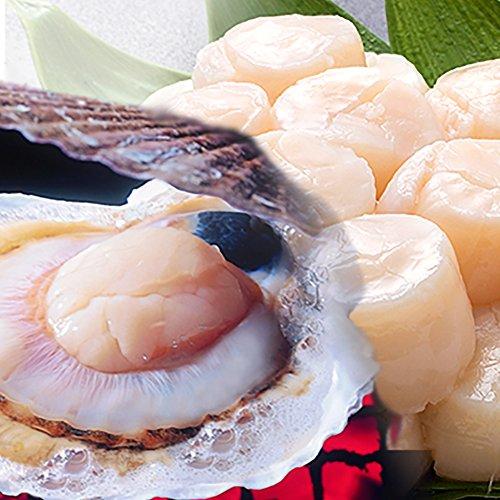 北海道産 貝付きホタテ 大 24枚入 1ケース