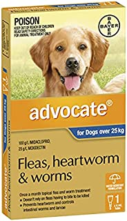 Advocate Flea, Heartworm and Worm Control for XL Dogs, Blue, 1 Pack