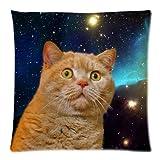 暖かい色Charmingフレーム–Funny Cat Galaxy Kitten面白い動物デザインクッション枕カバーケース、両側ファスナー付き枕カバーケース枕カバー18インチ
