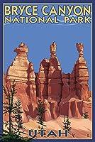 Bryce Canyon National Park # 2夏 12 x 18 Art Print LANT-20906-12x18