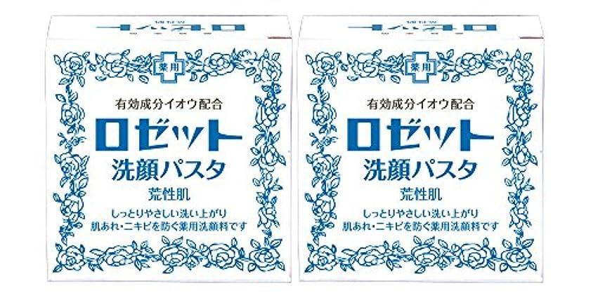 湿気の多いホールド移民ロゼット洗顔パスタ 荒性肌 90g×2個パック (医薬部外品)