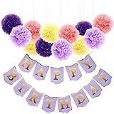 Blesiya HAPPY BIRTHDAY吊りバナー + 紙製 ポンポンフラワー ボール 誕生日パーティー 装飾セット