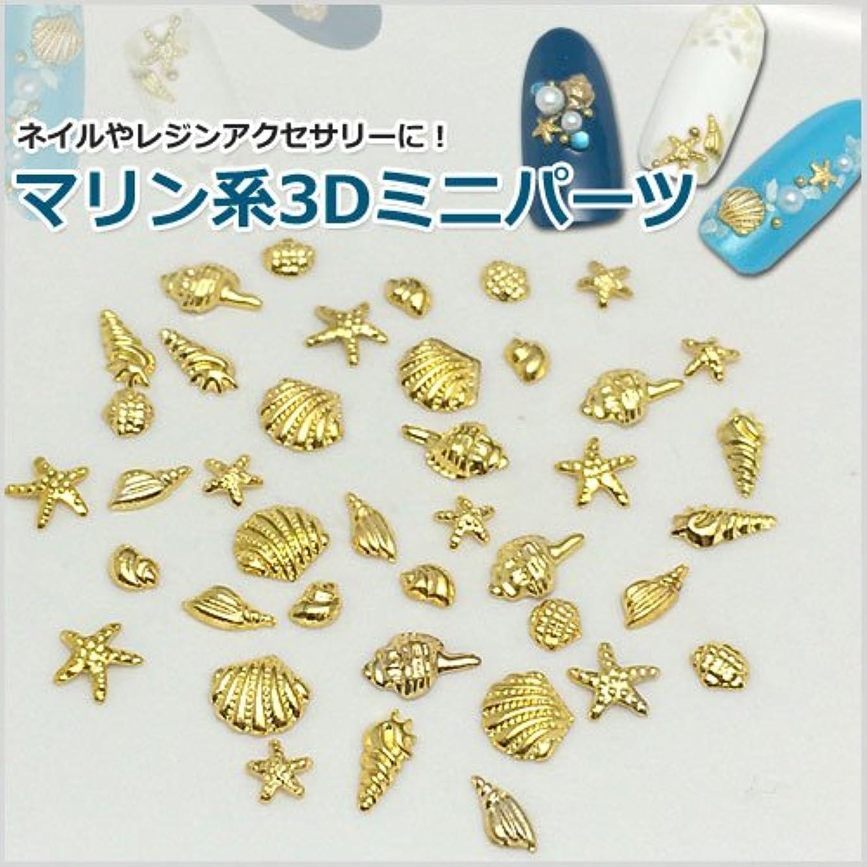 脊椎勇気のあるパスマリン系3Dミニメタルパーツ8種セット/合計40個入り「ゴールド」-シェル&ヒトデ-(ネイル?レジンアクセサリー?ネイルパーツ) [並行輸入品]