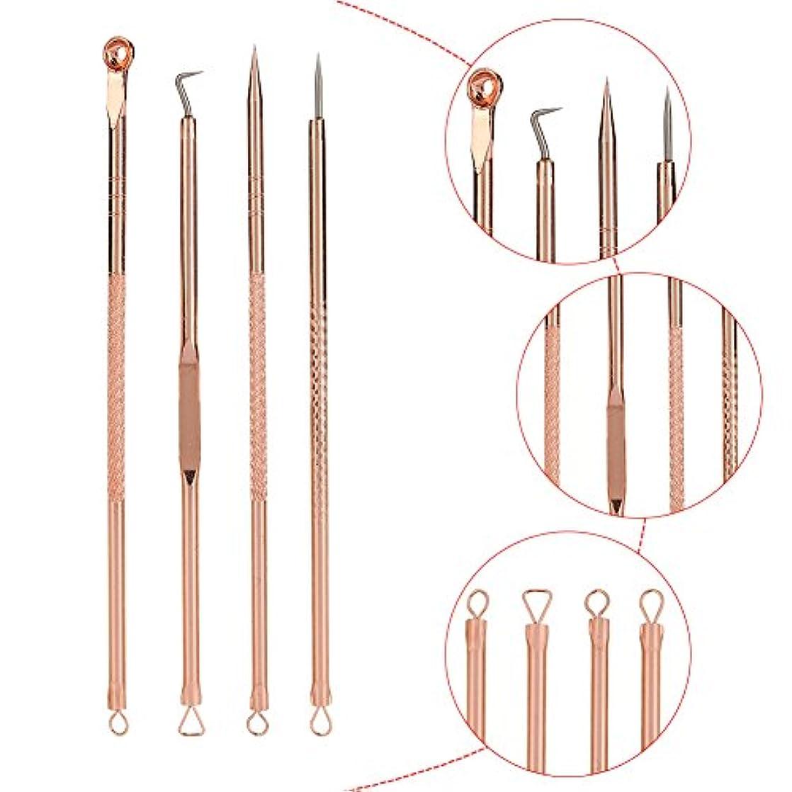 ぶどう哺乳類ラオス人4PCSブラックヘッド抽出器 - ブラックポイントのステンレス鋼コメドーンブラックヘッドプーラープロフェッショナル抽出 - ケース付きブラック/ホワイトポイント/ニキビボタン/ボタン