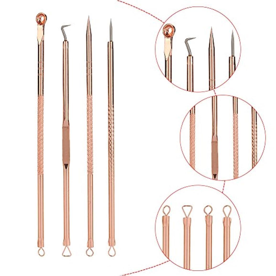 4PCSブラックヘッド抽出器 - ブラックポイントのステンレス鋼コメドーンブラックヘッドプーラープロフェッショナル抽出 - ケース付きブラック/ホワイトポイント/ニキビボタン/ボタン