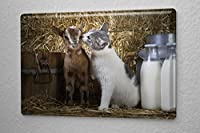 Tin Sign ブリキ看板 Nursery Decoration Cat and lamb Metal Plate