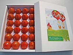 フルーツトマト 1kg しあわせトマト まるいちファーム