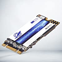 Dogfish M.2 2242 256GB 内蔵ソリッド・ステート・ドライブ Desktop Laptop Hard Drive PC M2 (256GB)