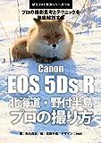 ぼろフォト解決シリーズ116 撮影思考とテクニックを徹底解説する Canon EOS 5Ds R 北海道・野付半島 プロの撮り方