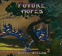 Future Hopes [12 inch Analog]
