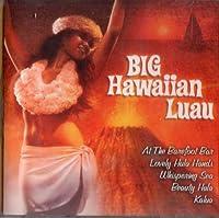 Big Hawaiian Luau