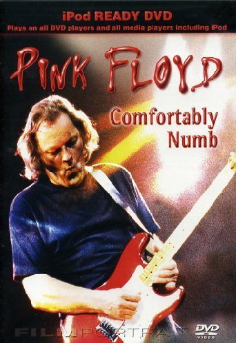 Pink Floyd - Comfortably Numb [DVD]