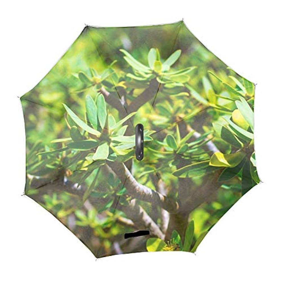 幾分分布成功した反転傘 便利傘 長傘 逆傘自然植物マクロ熱帯 梅雨対応 風に強い 晴雨兼用 日傘 UVカット UPF50+ 8本骨 完全遮光 遮熱 耐風 C型傘