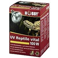 UV爬虫類バイタルデザート、100 W