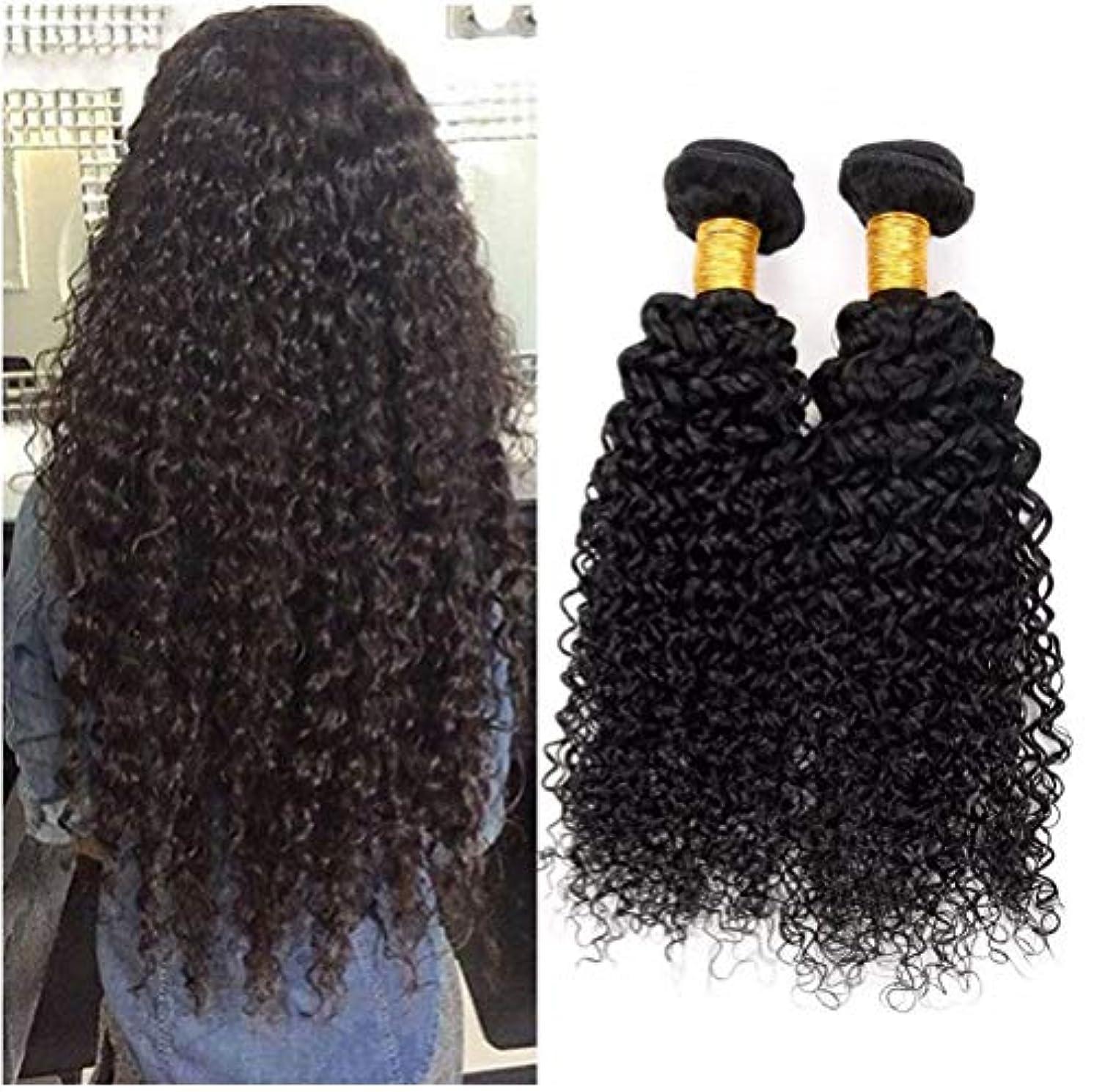 害虫神秘消毒剤女性の髪織り8Aブラジル変態カーリーヘアバンドルブラジル髪カーリー人間の髪バンドル1バンドルナチュラルカラー(100 +/- 5g)/ pc