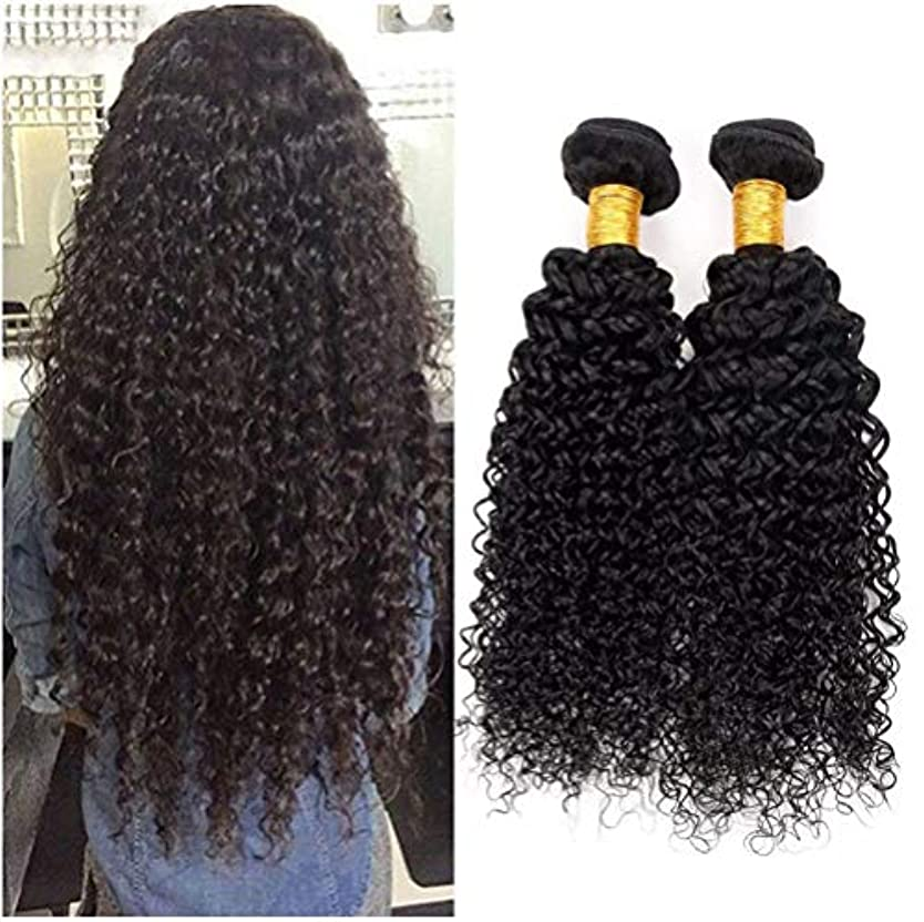 弾力性のある力全部女性の髪織り8Aブラジル変態カーリーヘアバンドルブラジル髪カーリー人間の髪バンドル1バンドルナチュラルカラー(100 +/- 5g)/ pc