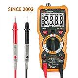 PEAKMETER デジタルマルチメーター PM18C テスター デジタル 高精度 電流 電圧 絶縁抵抗テスター AC DC