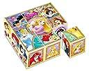 9コマ 子供向けパズル ディズニー すてきなプリンセス 【キューブパズル】