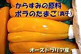 真子(ボラのたまご・中)高級珍味『からすみ』の材料 (1腹/200g前後(170-220g))