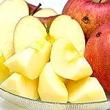 山形県産 ご家庭用 糖度厳選りんご 3kg