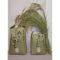 農家直送 秋田県大仙市産あきたこまち(精白米)10キロ入り(Chabudai倶楽部)