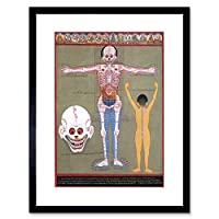 Painting Weird Ancient Asian Anatomy Scientific Strange Framed Wall Art Print ペインティング奇妙な古代の壁