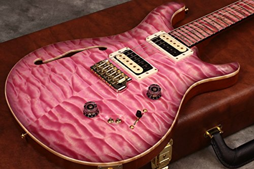 Paul Reed Smith / Private Stock #8022 Custom24/08 Semi-Hollow with f-hole /Faded Pink Smoked Burst